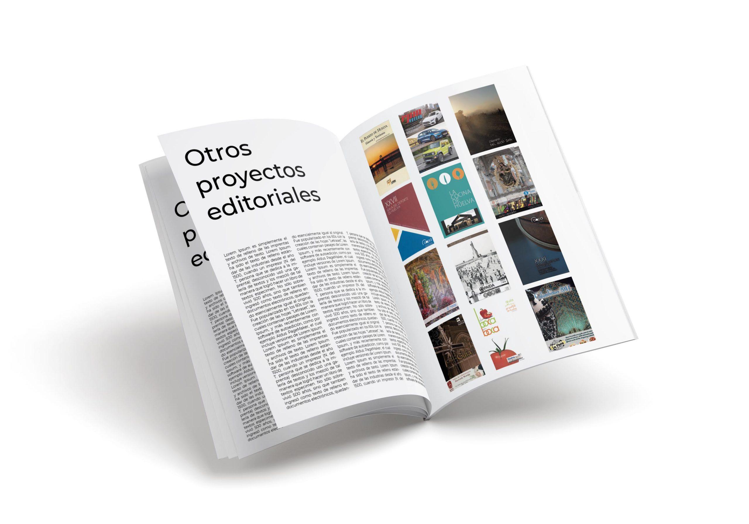 Otros proyectos editoriales realizados por dona vazquez